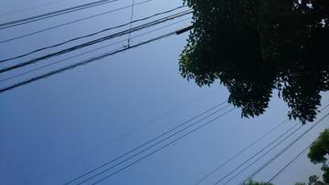 「こんにちは」07/18(水) 08:57 | なつきの写メ・風俗動画