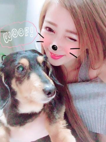 「完売♡」07/19(木) 00:20   シンディの写メ・風俗動画