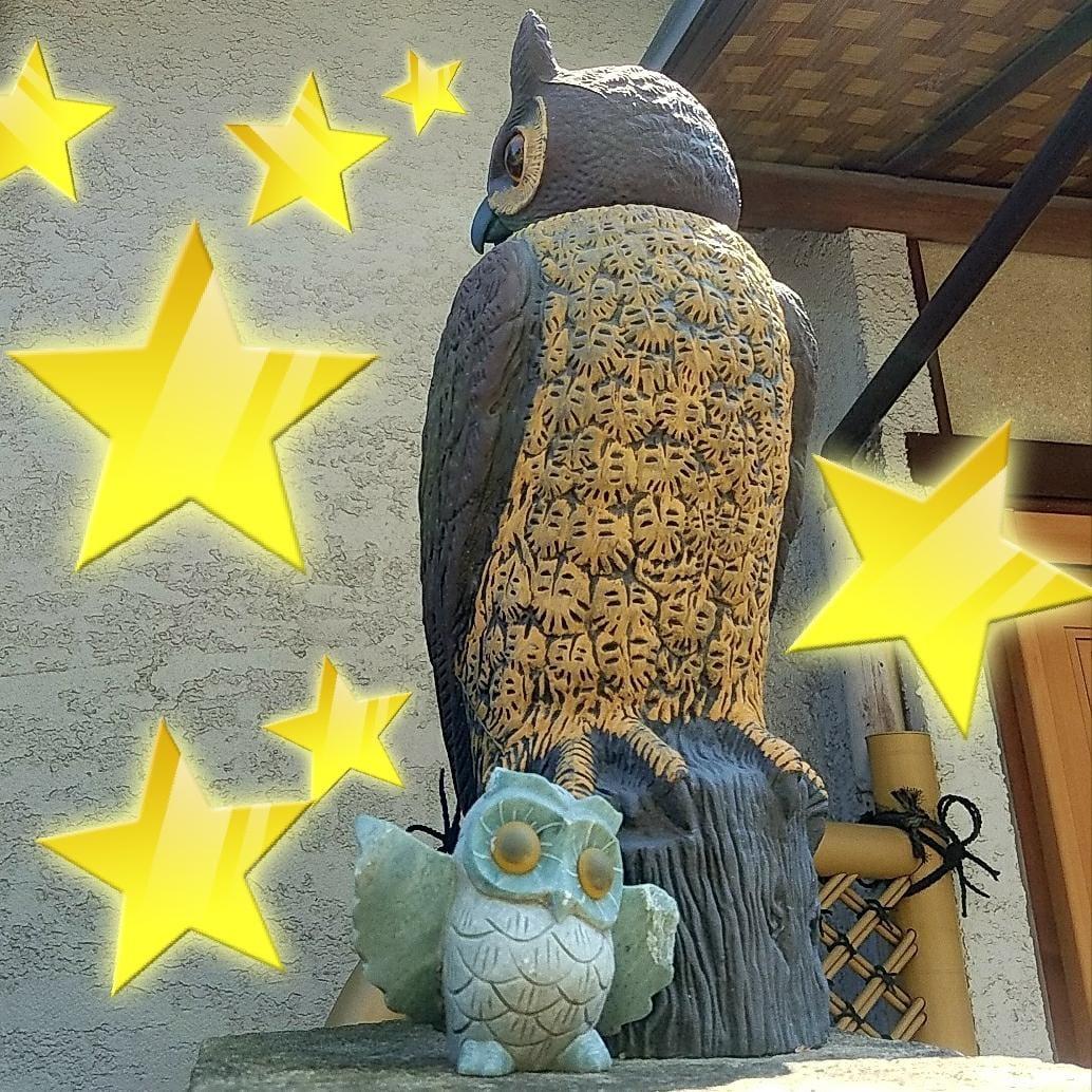 「行先はそっち」07/21日(土) 09:50   りんの写メ・風俗動画