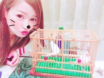 「ラスト♡」07/21(土) 19:55 | シンディの写メ・風俗動画
