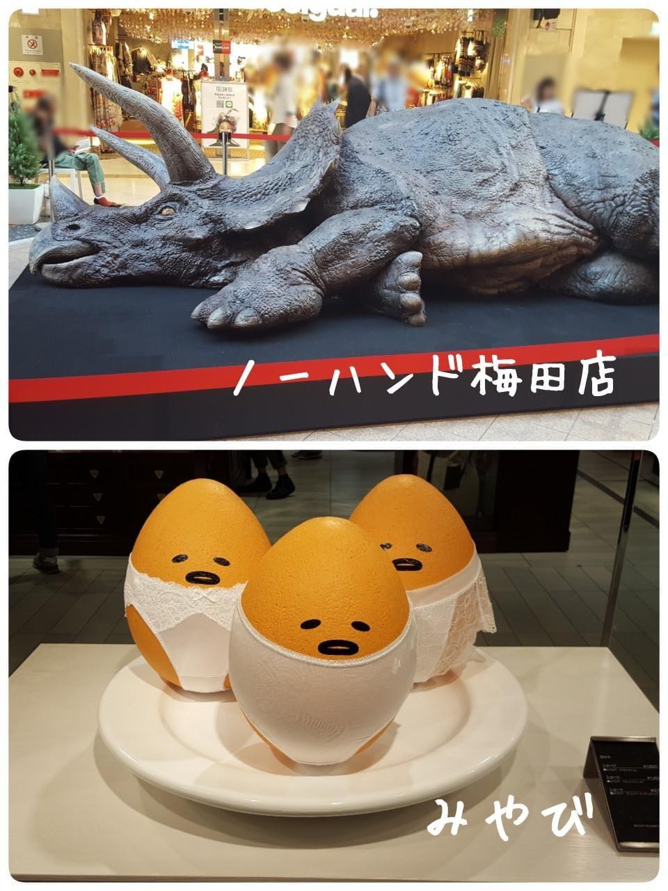 「恐竜リアルでした…!」07/23(月) 16:24   みやびの写メ・風俗動画