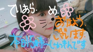 「本日15時より!」08/03(金) 09:33 | てぃあら☆超神かわいい美少女♪の写メ・風俗動画