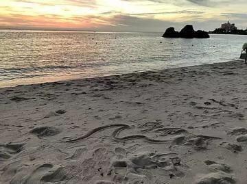 「海」08/04(土) 23:24 | ゆいなの写メ・風俗動画