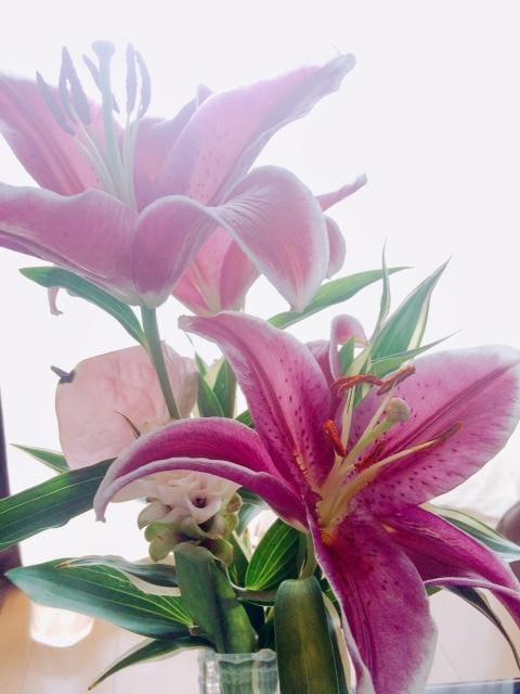 「支度中!」08/11(土) 14:18 | 雪乃-ゆきのの写メ・風俗動画