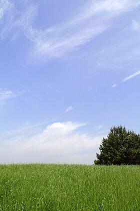 ちとせ「11日16時頃のお客様へ←ちとせより」08/12(日) 17:48 | ちとせの写メ・風俗動画