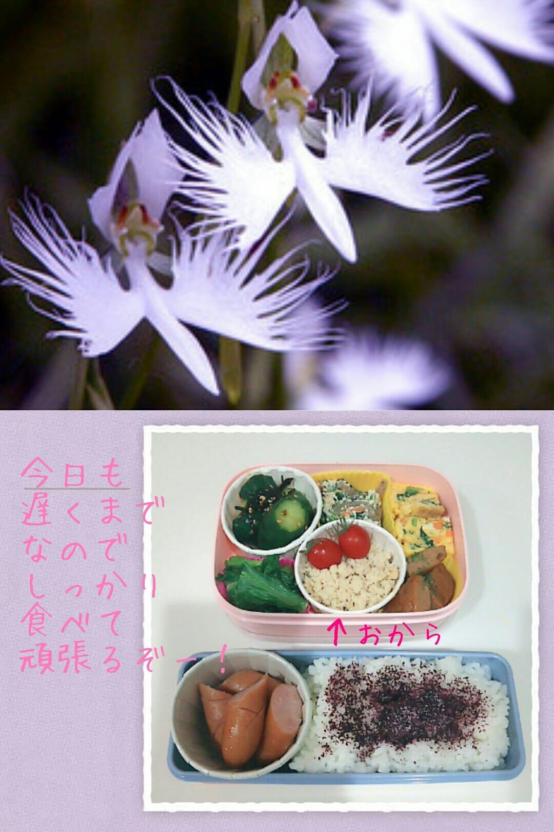 「「ぉ昼❁time~」」08/14日(火) 14:31 | ありさの写メ・風俗動画