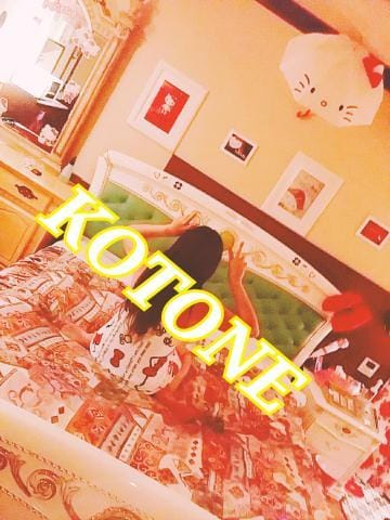 「\thx/」08/14日(火) 18:00 | ことね(7/30体験入店)の写メ・風俗動画