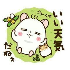 「こんにちは」08/17(金) 10:11 | めぐの写メ・風俗動画