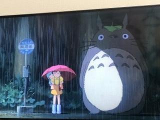 「ととろ♥️」08/17(金) 23:14   王妃 クレアの写メ・風俗動画