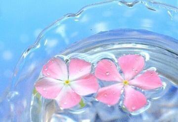 「[お題]from:ツルツル・シコシコさん」08/18日(土) 23:25   藤堂の写メ・風俗動画