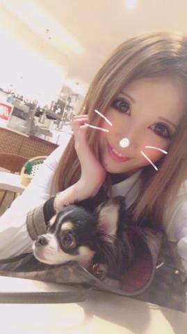 「[お題]from:あちゃいさん」08/20(月) 06:46   れいらの写メ・風俗動画