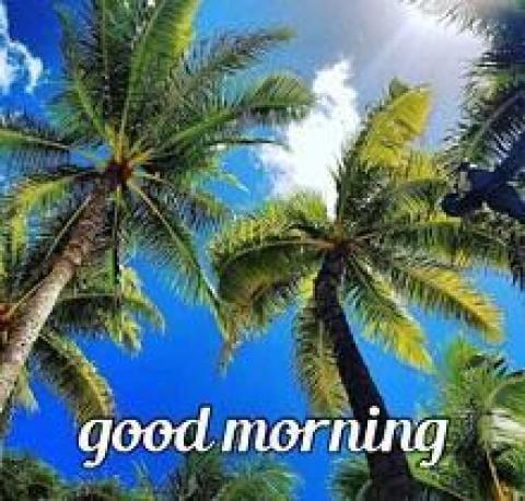 飯島えみり「おはようございます♪」08/21(火) 09:54 | 飯島えみりの写メ・風俗動画