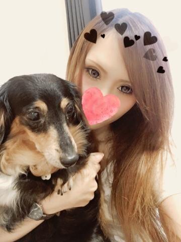 「ビックリ??」08/21(火) 17:00   しほの写メ・風俗動画