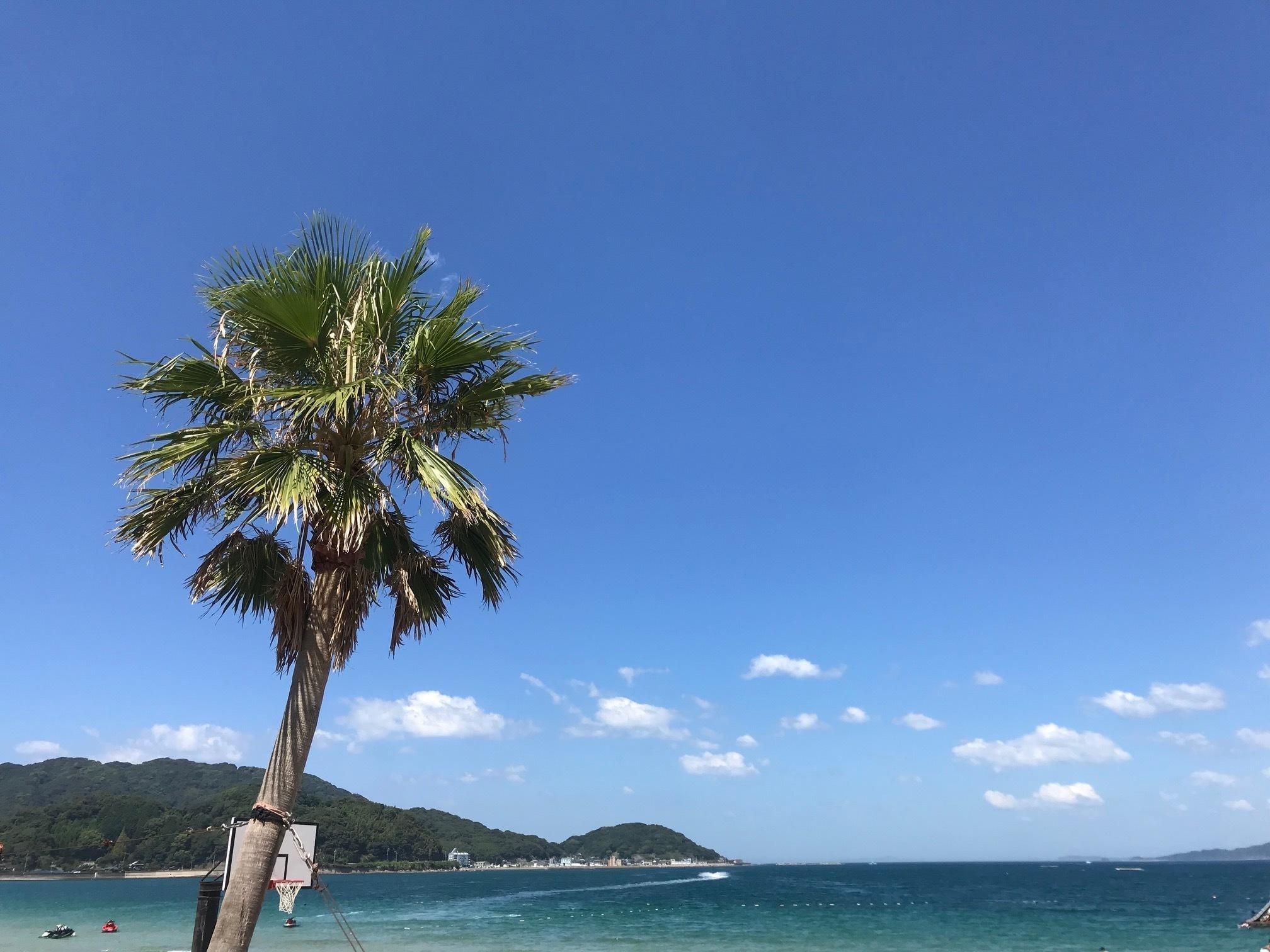 「こんがりDay」08/21(火) 20:04 | ちぃの写メ・風俗動画
