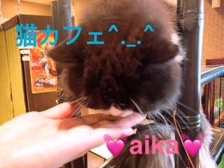 「出勤の予定(^^)」08/23(木) 22:48   あいかの写メ・風俗動画