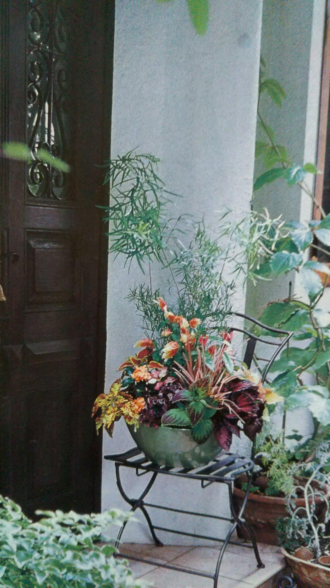 「お花が 大好き(^_^)v」08/27(月) 09:28 | けいこの写メ・風俗動画