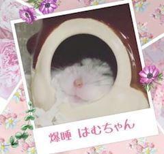 「朝から癒やし」09/09(日) 05:47 | ユンの写メ・風俗動画