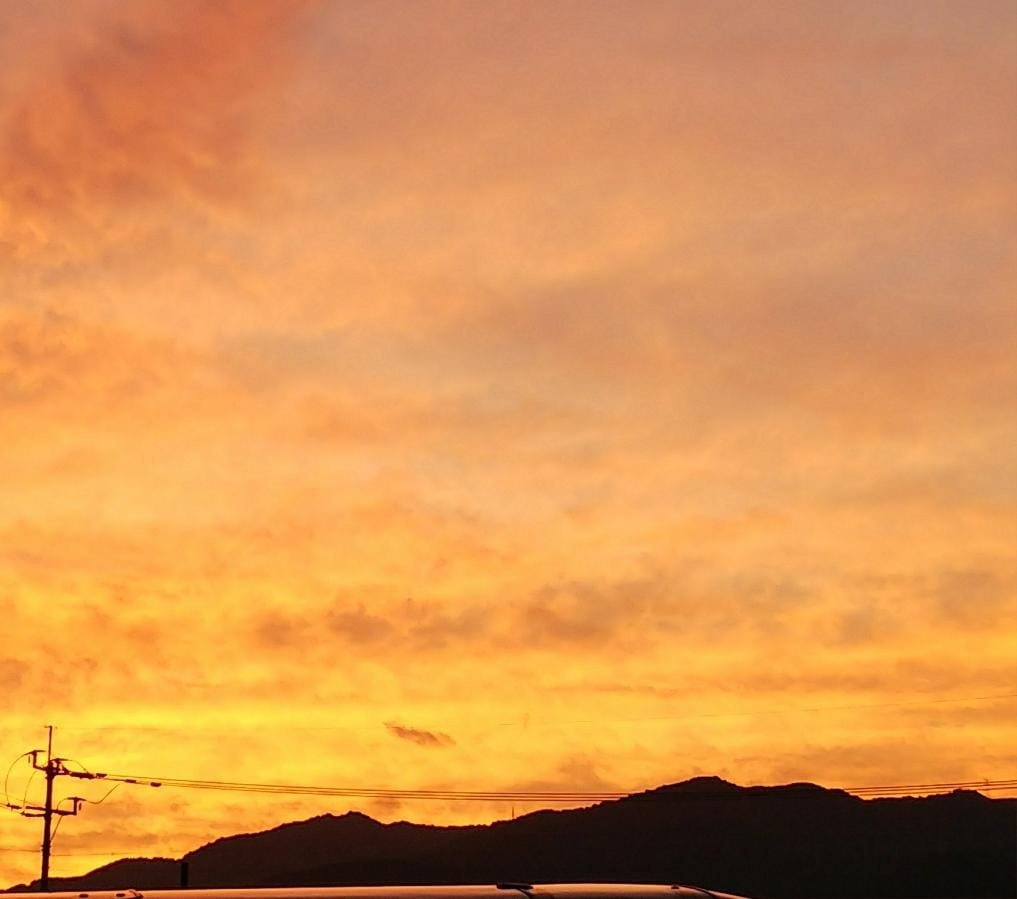 さやか【~人妻の都~】「夕焼けが」09/17(月) 22:20 | さやか【~人妻の都~】の写メ・風俗動画
