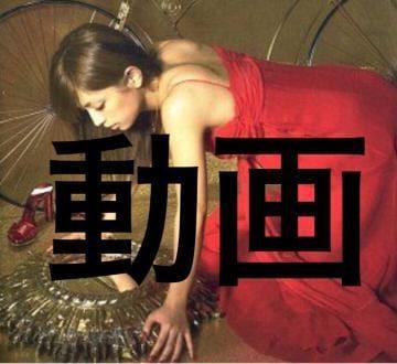 綾波せりな「動画ちゃん??」09/19(水) 20:45 | 綾波せりなの写メ・風俗動画