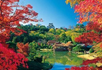 「秋っぽい画像」09/20(木) 16:07   さとこの写メ・風俗動画