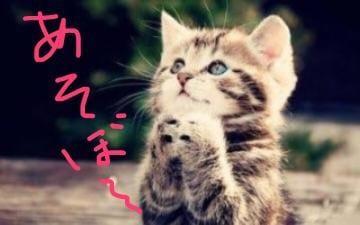 ひとみ「[今日の下着は?]:フォトギャラリー」09/20(木) 16:47 | ひとみの写メ・風俗動画