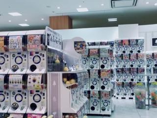 「ガチャガチャの王国っ♪」09/21(金) 02:00 | りおの写メ・風俗動画