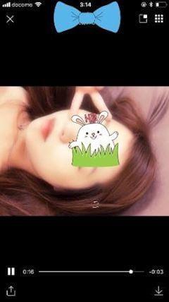 ココナ「出勤っ」09/21(金) 21:22   ココナの写メ・風俗動画