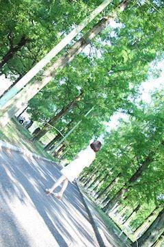 みすず「みすず」09/22(土) 18:28   みすずの写メ・風俗動画