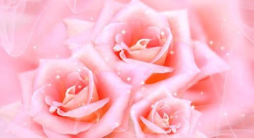 「ありがとうございます(^_^*)」09/23(日) 19:41 | 綾瀬 花音の写メ・風俗動画
