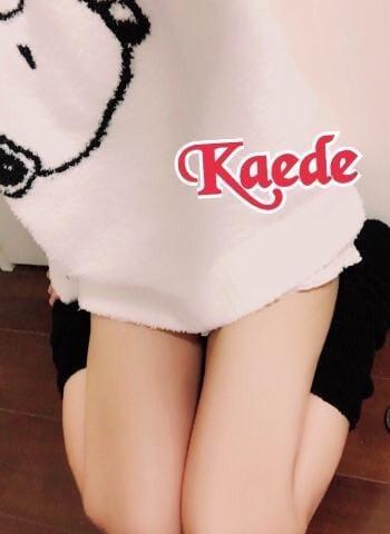 「おやすみなさい」10/04(木) 01:15   KAEDEの写メ・風俗動画
