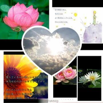 「7日ありがとう(★^-^*)」10/07(日) 11:22   なつみ◇愛くるしい甘えん坊◇の写メ・風俗動画