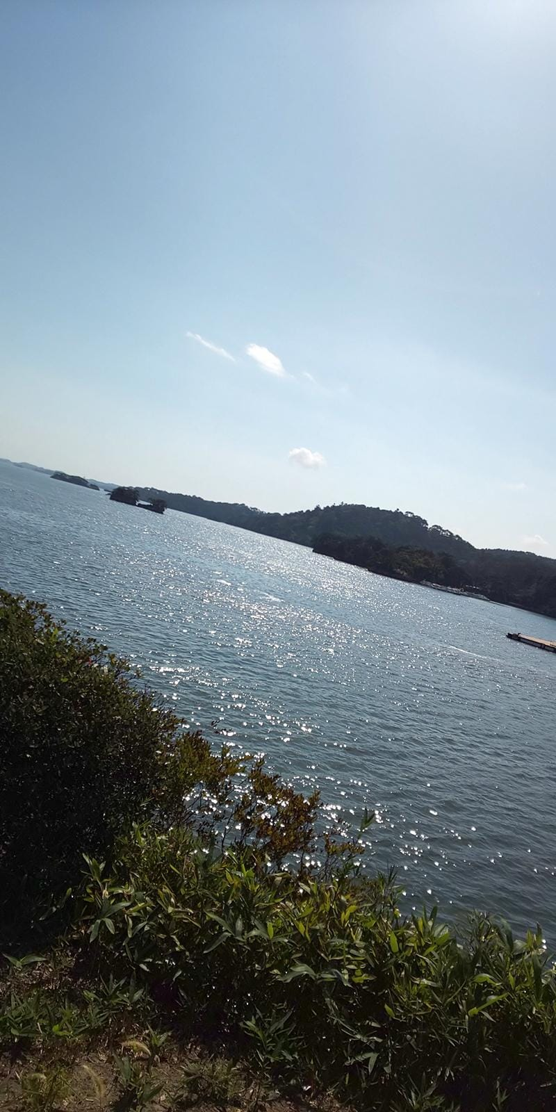 「へー」10/10(水) 06:00 | みほ 奥様の写メ・風俗動画