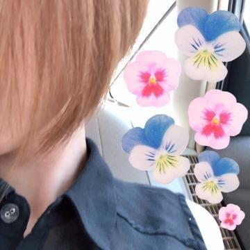 「本日12:00〜」10/12(金) 10:40 | こうの写メ・風俗動画