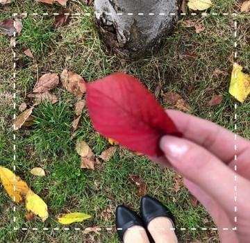 「北海道の皆さんっ⸜(*ˊᗜˋ*)⸝」10/16(火) 12:50 | ★☆愛沢りょう☆★の写メ・風俗動画