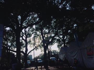 「おはようございます」10/17日(水) 11:13 | セナの写メ・風俗動画