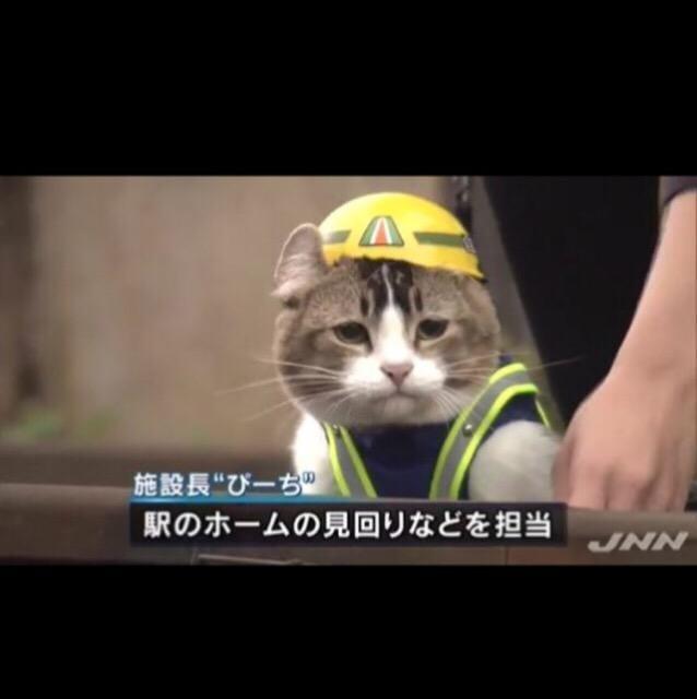 「何処にいるんですか?」10/17日(水) 15:10 | 岸本の写メ・風俗動画