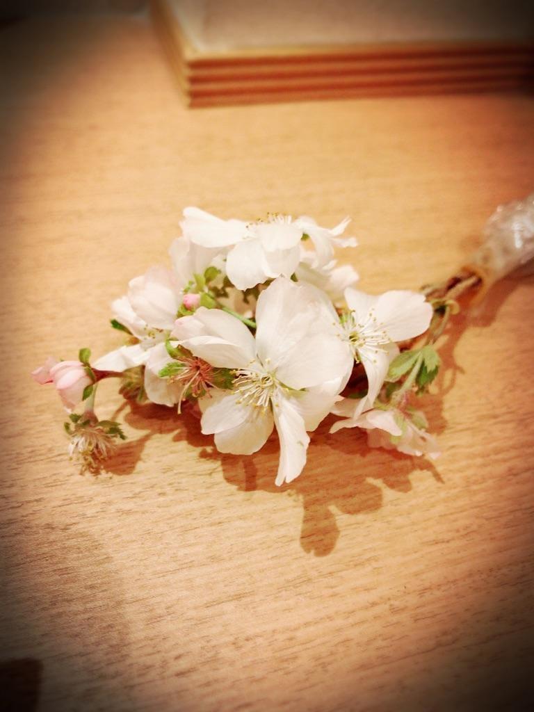 「四季桜のプレゼント」10/17(水) 17:57   みことの写メ・風俗動画