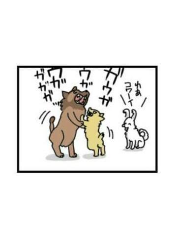 「動物のケンカ★」10/19日(金) 12:49 | しょう【エロ☆カッコイイ☆彡】の写メ・風俗動画