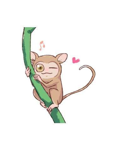 「【アニマル診断】今日の運勢ランキング」10/20(土) 04:05 | 樹寿の写メ・風俗動画