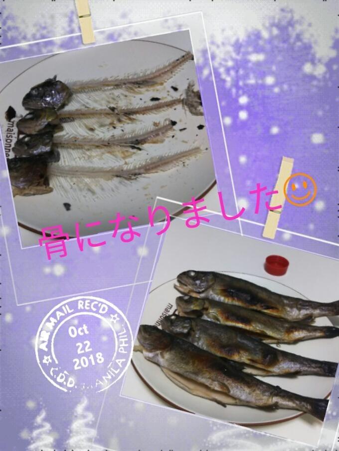 るい「魚祭り( ´_ゝ`)」10/23(火) 10:25 | るいの写メ・風俗動画