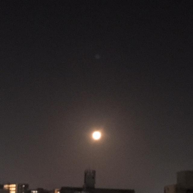 「満月」10/24(水) 19:10   かおり【~若妻の都~】の写メ・風俗動画