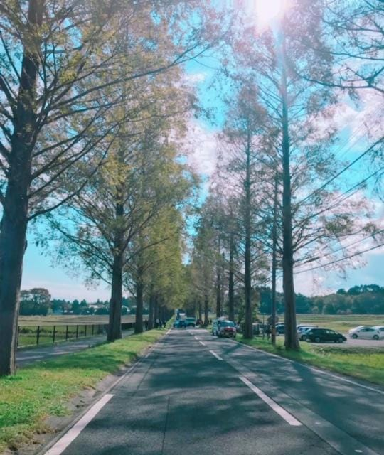「出勤です」11/03(土) 22:00   さくらの写メ・風俗動画
