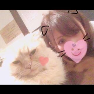 「ありがと( ´ ▽ ` )♡」11/05(月) 02:28 | チアキの写メ・風俗動画