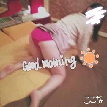 「朝ですよ〜」11/07(水) 07:11 | 東海ここな【プレミアム】の写メ・風俗動画