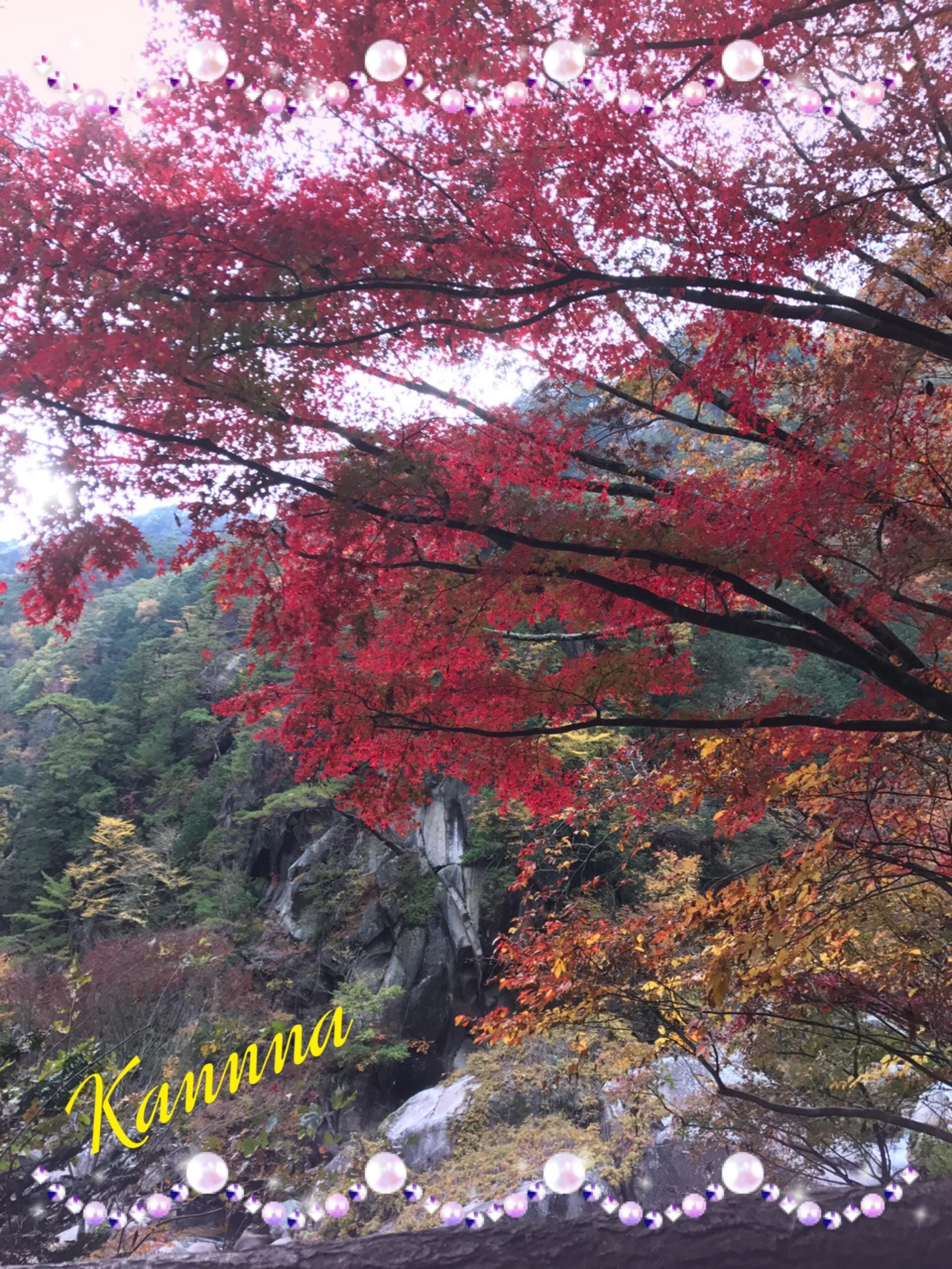 「☆紅葉の秋☆」11/13日(火) 02:16 | 環奈の写メ・風俗動画