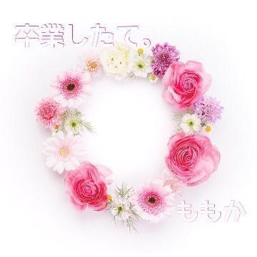 ももか「11/12(月)お礼???」11/14(水) 00:32 | ももかの写メ・風俗動画