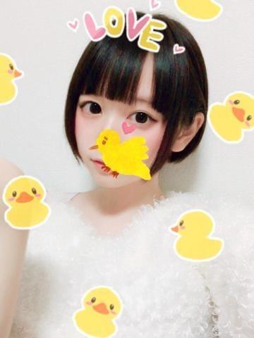 「先日のお礼」11/14日(水) 01:00   アリスの写メ・風俗動画