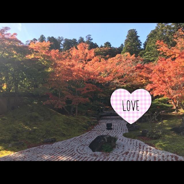 ここね「紅葉」11/14(水) 18:24 | ここねの写メ・風俗動画