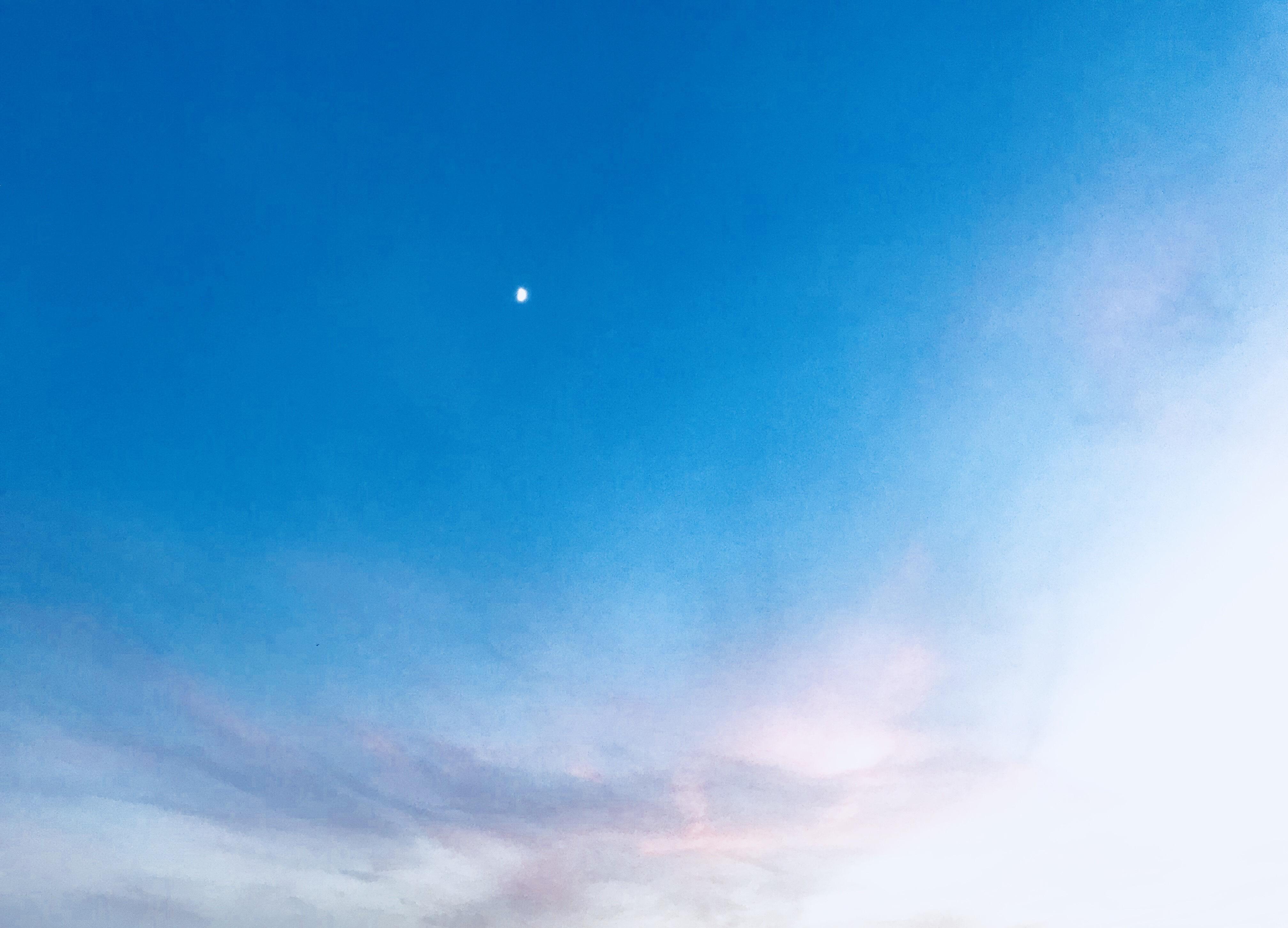 あずきちゃん「」11/14(水) 21:05 | あずきちゃんの写メ・風俗動画