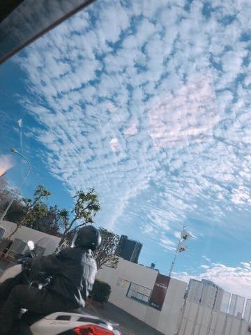 ウ メ「☆Mさん」11/16(金) 08:51 | ウ メの写メ・風俗動画